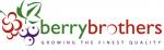 Berrybrothers
