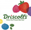 Driscoll's of Europe, Middle East & Africa